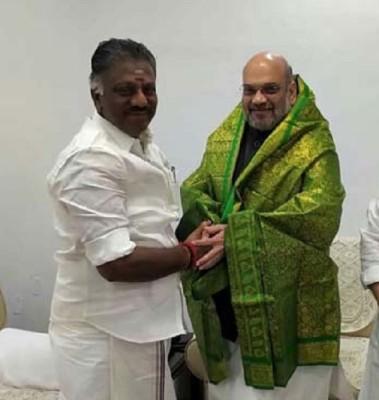 भाजपा और एआईएडीएमके तमिलनाडु में मिलकर लड़ेंगे विधानसभा चुनाव - Matribhumisamachar
